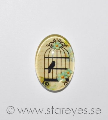 Altered art cabochon i glas 25x18mm - Birds